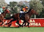 Wielka Warszawska jest długodystansową gonitwą porównawczą dla trzyletnich i starszych koni
