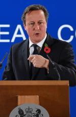 David Cameron chce pozostania Wielkiej Brytanii w Unii, ale na zmienionych warunkach