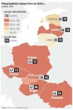 Polskie firmy są w grupie przedsiębiorstw o najbardziej optymistycznych planach na 2015 r.