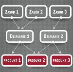 Schemat 1. Jak zasoby i działania przekładają się na produkt