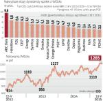 Inwestor powinien obserwować indeks WIGDiv