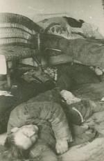 W wyniku rzezi wołyńskiej zginęło ok. 60 tys. Polaków.