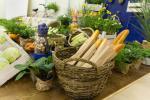 Oprócz regionalnych potraw podczas targów swoją ofertę przedstawili też sprzedawcy roślin