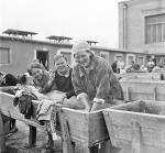 Szacuje się, że na mocy umowy Sikorski – Majski Związek Radziecki zwolnił z więzień oraz obozów 340 tys. Polaków. Z tej liczby ok. 115 tys. uciekło do Iranu.