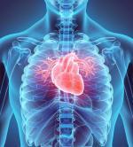 Naukowcy chcą stworzyć bazy modeli organów w 3D.