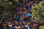 Diada, czyli święto Katalonii. Tysiące mieszkańców Barcelony manifestowało na ulicach w rocznicę zdobycia miasta w 1714 r. przez wojska Filipa V. Król zniósł wówczas katalońskie Kortezy, wprowadził kastylijskie prawa i język hiszpański jako urzędowy.