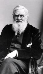 Alfred Russel Wallace (1823–1913)