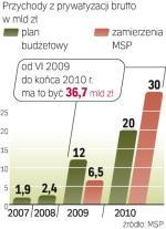 Rekordowa  prywatyzacja 2010