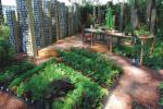 Oryginalności zielonej przestrzeni dodają stoły i krzesła, które niegdyś miały swoje miejsce w kuchni. Teraz można przy nich wypocząć na świeżym powietrzu albo wykonać drobne prace ogrodowe.