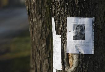 Policja coraz rzadziej pisze listy gończe