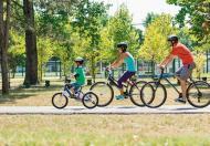 Miasta pełne rowerów