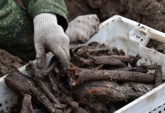 Brześć: w miejscu budowy znaleziono szczątki ponad tysiąca ludzi