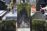 Cmentarz Powązkowski – kiedy na nagrobku widać młody wiek i datę z końca 1918 roku, to niemal pewne, że spoczywa tu ofiara hiszpanki