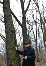 *Leszek Zawadzki zapowiada, że w ostateczności, aby bronić parku, przykuje się do drzewa rafał guz