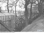 Po lewej – demonstracja PPS w 1931 r. Szubienica  stoi obudowana specjalną  osłoną jako  patriotyczna  relikwia