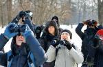 Gołębi  i wróbli były setki, a myszołów tylko jeden. Warszawiacy wypatrywali ptaków  w parku  i liczyli je
