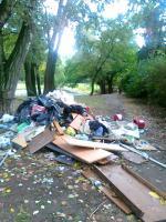 Wyrzucone śmieci
