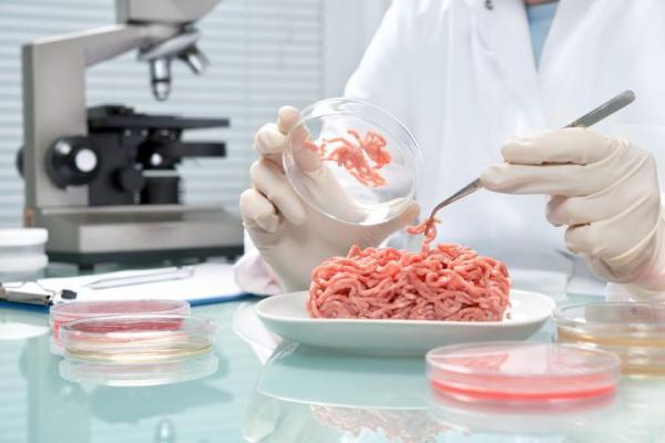 W centrum na SGGW będą prowadzone badania nad żywnością m.in. w kontekście zmniejszenia otyłości i cukrzycy