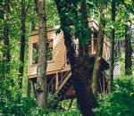 <Polacy chętnie wypoczywają w drewnianych domkach na drzewach  w Nałęczowie